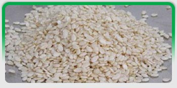 Oil Seeds, Exporters of Groundnut Kernels, Hulled Sesame Seeds, Natural White Sesame Seeds, Natural Black Sesame Seeds, Niger Seeds